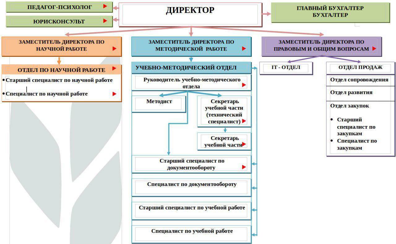 Структура института